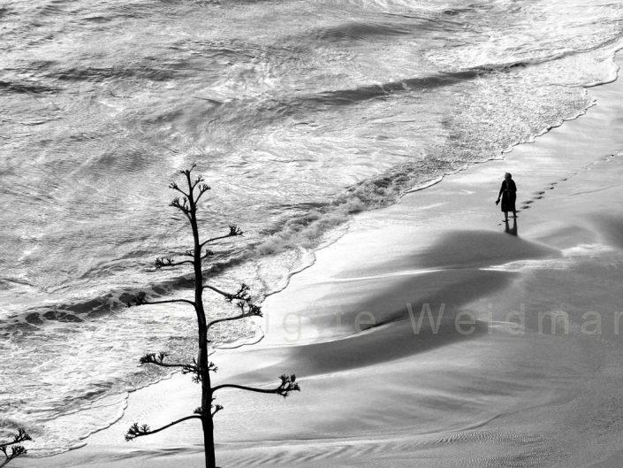 brigitte-weidmann_living longer strandlauf